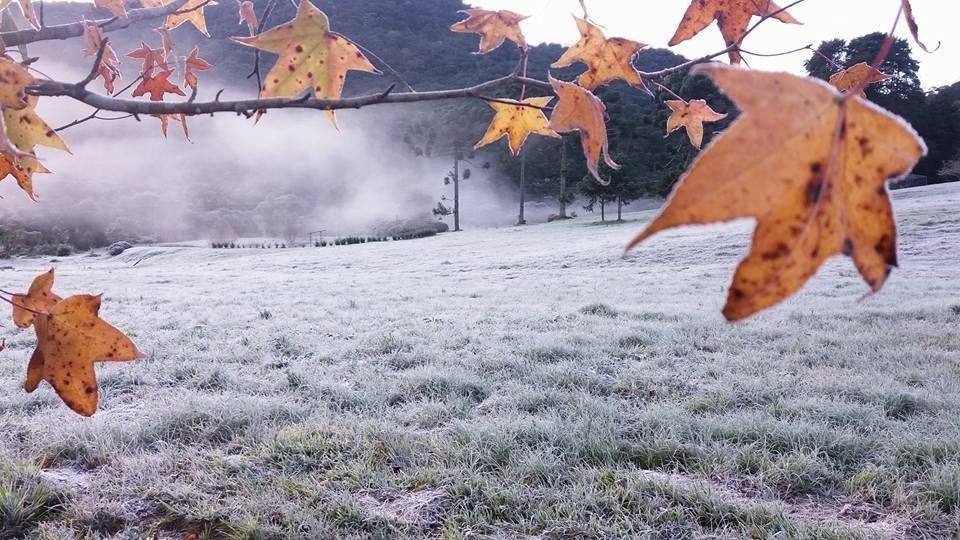Geada no Bairro Campeste em Gonçalves, MG. No inverno, temperaturas ficam abaixo de zero.